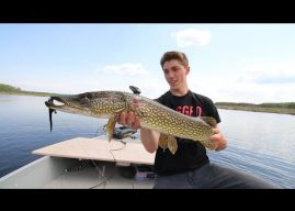 Giant Pike On The Fly!
