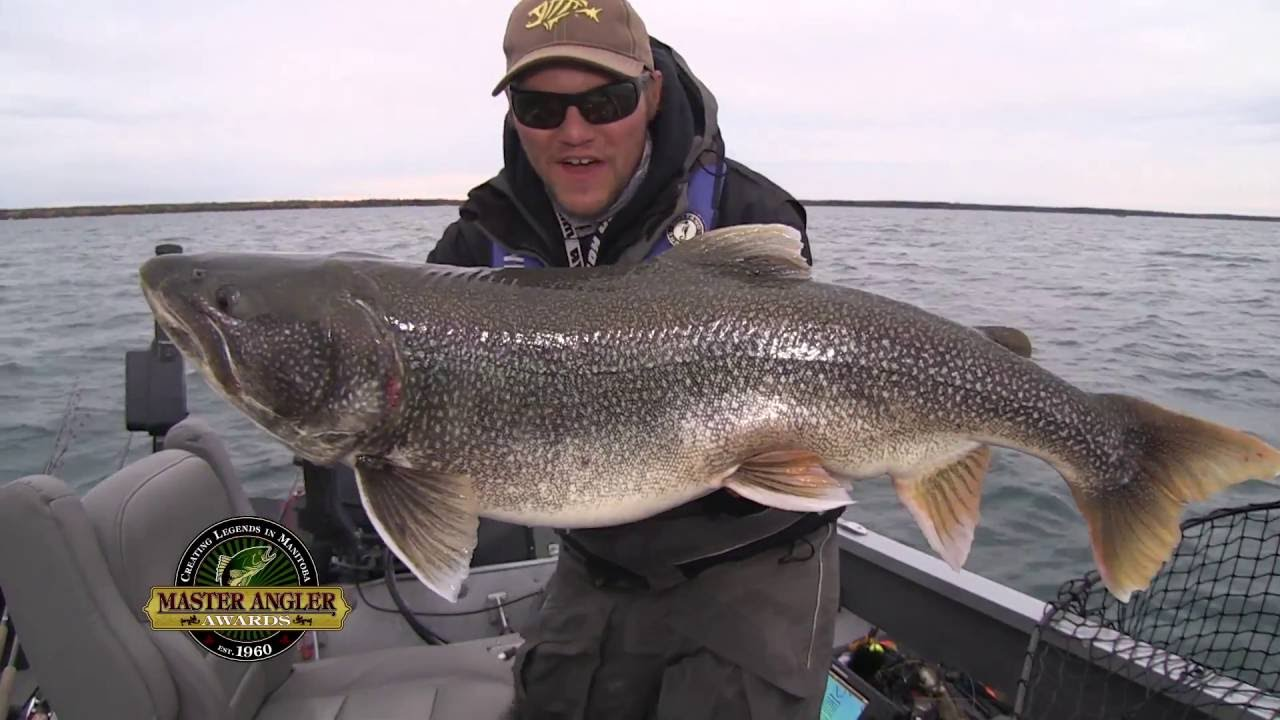 Monster lake trout fishing in manitoba for Trout fishing california