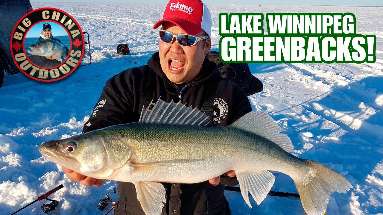 Lake winnipeg greenbacks on new year 39 s day with big china for Lake winnipeg ice fishing